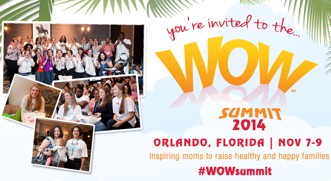 WoW Summit 2014 Event