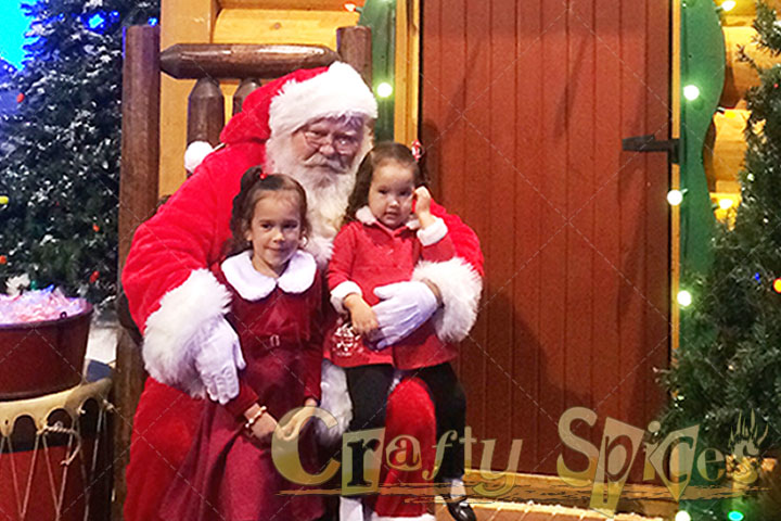 The Girls with Santa Claus