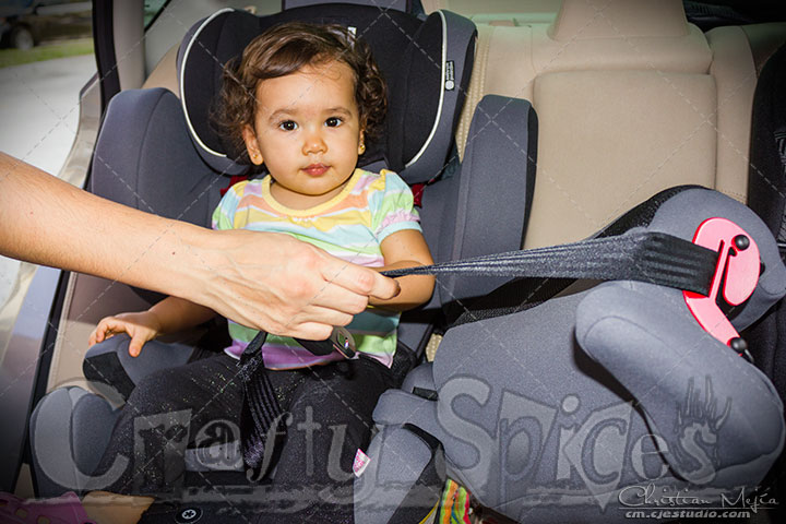 Easy to sit and to take out of the Kiddy Car Seat