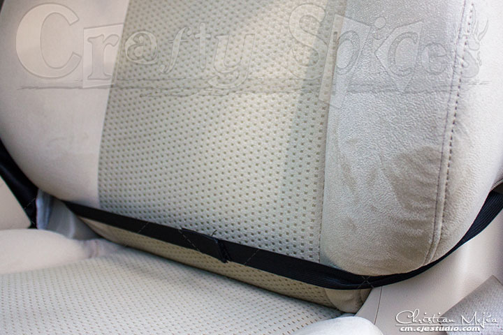 Seat Back Protector (Cover)