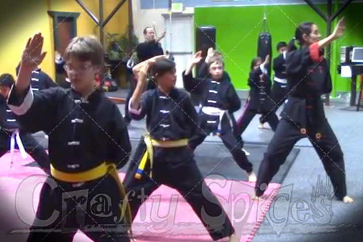 Clases of Martial Arts for Kids - Shens-Chi