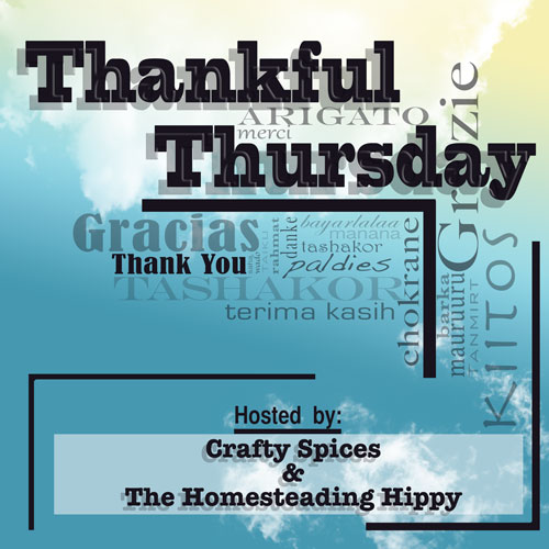 mt_ignore:Thankful Thursday