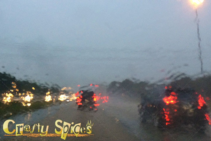 Rainy Day, headed back home from Busch Gardens Tampa